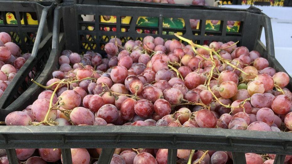 В Воронеже уничтожили 1,6 т турецких персиков и винограда