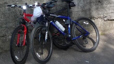 В Поворинском районе двое детей украли три велосипеда