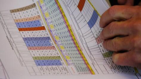 «ЕР» получила 74,3% после обработки 97,8% бюллетеней на выборах в Воронежскую облдуму