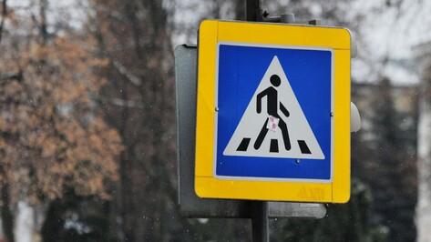 В Воронеже будут судить сбившего насмерть скрипачку водителя автобуса