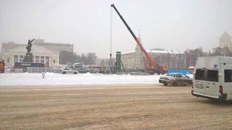 В Воронеже приступили к установке главной новогодней елки