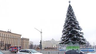 Главная елка Воронежа вошла в топ-20 самых высоких в России