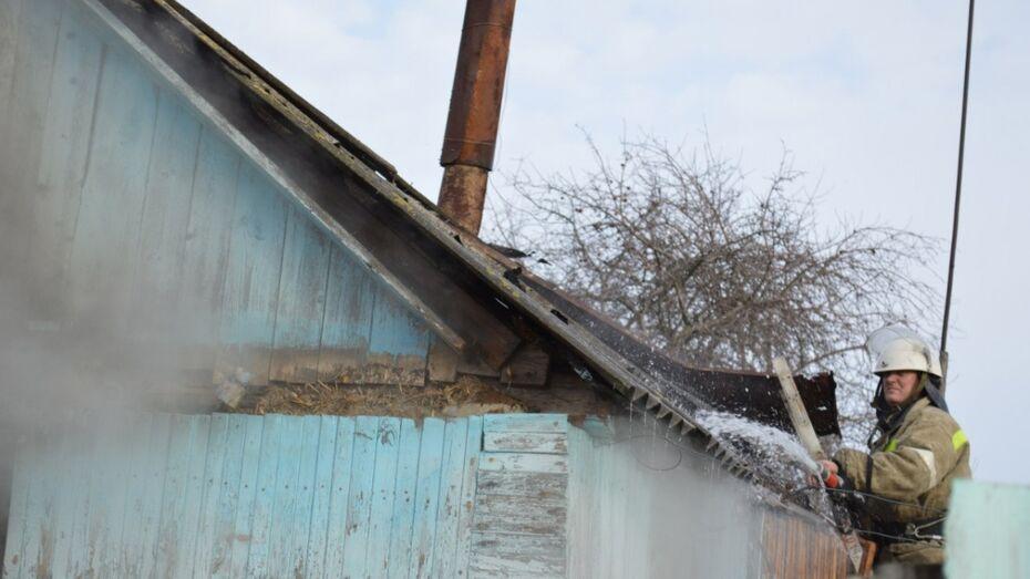 Соседи спасли пенсионерку от гибели на пожаре в Воронежской области