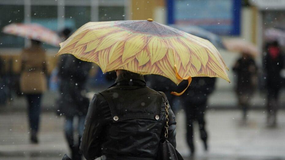 Спасатели предупредили воронежцев о мокром снеге с дождем
