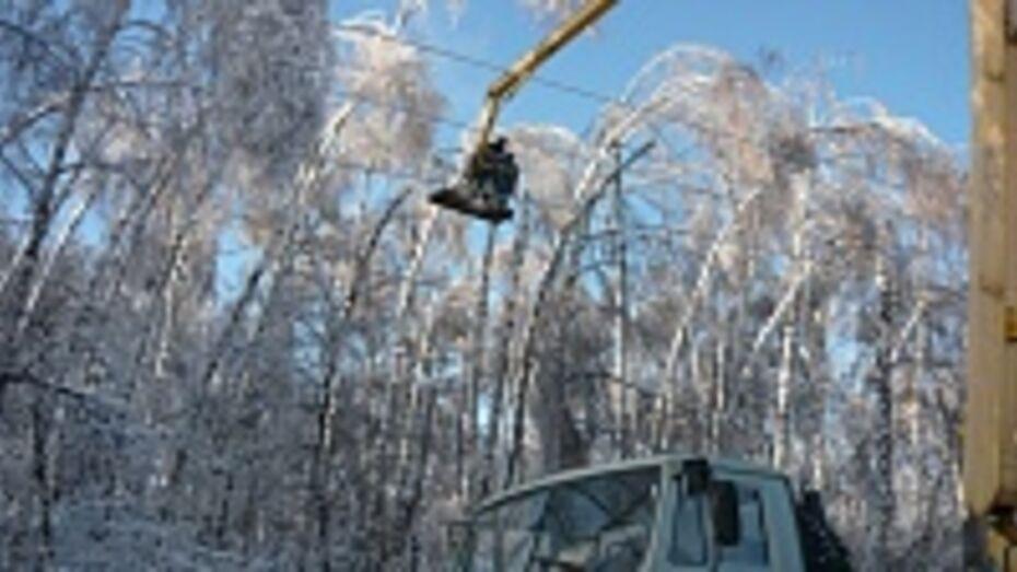 В воронежском парке «Оптимист» началась расчистка и расширение просеки высоковольтной ЛЭП