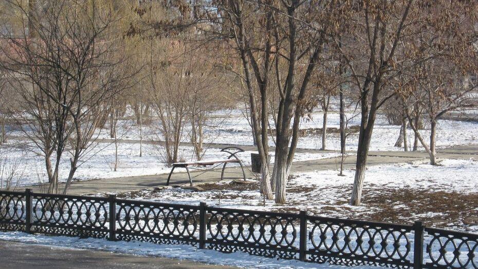 В Калачеевском районе после раннего весеннего тепла выпал снег