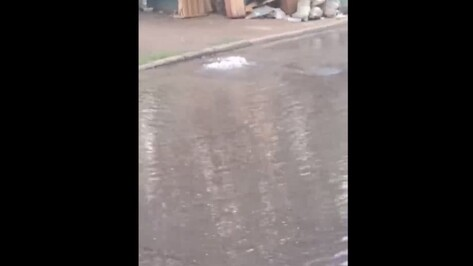 Дорогу на Московском проспекте в Воронеже залило водой из-за утечки на водопроводе
