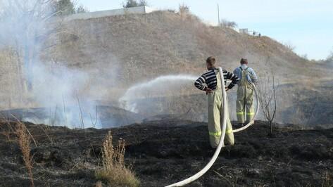 В Рамонском районе начались ландшафтные пожары