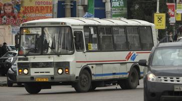Нумерация автобусов и выплаты на детей от 3 до 7 лет. Что обсуждают воронежцы в соцсетях