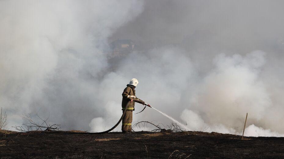 В окрестностях Новохоперска загорелась прошлогодняя трава