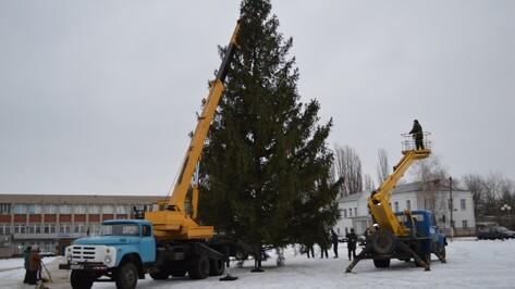 В Эртиле установили главную новогоднюю елку