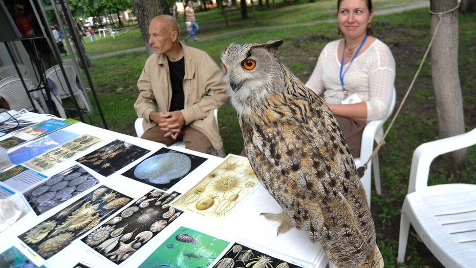 В Воронеже Всемирный день окружающей среды отметили фестивалем «Экоград»