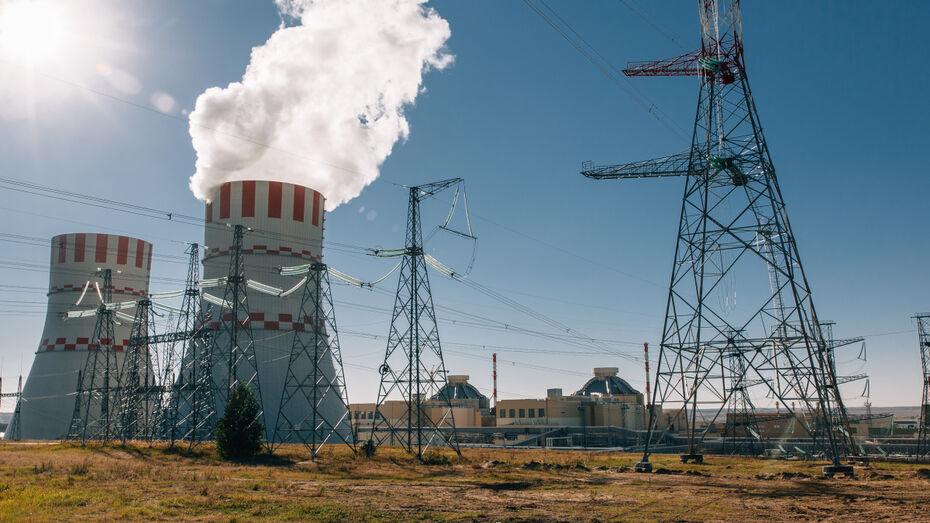 На Нововоронежской АЭС энергоблок №6 остановили на планово-предупредительный ремонт