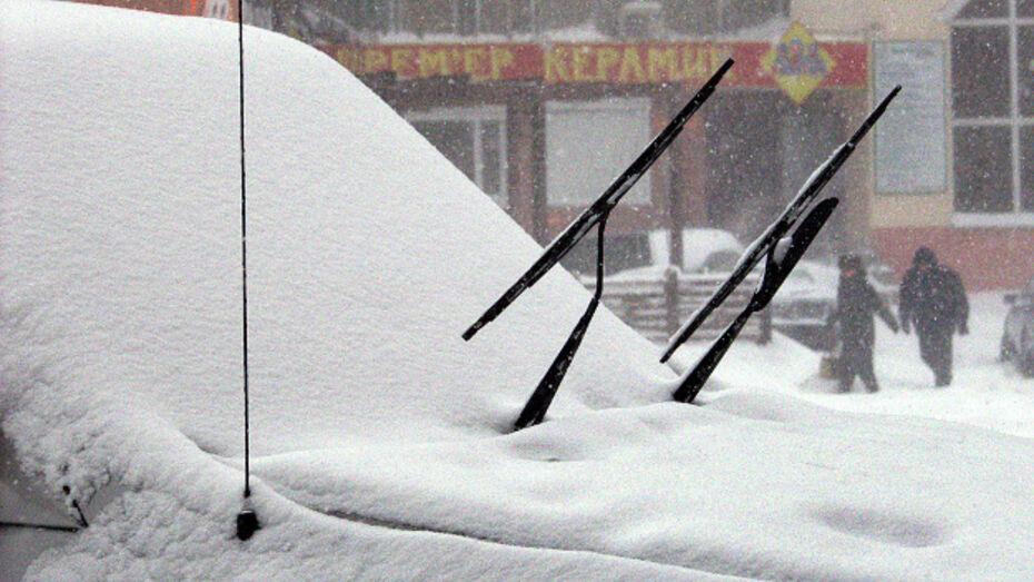 Синоптики обещают воронежцам снег уже завтра