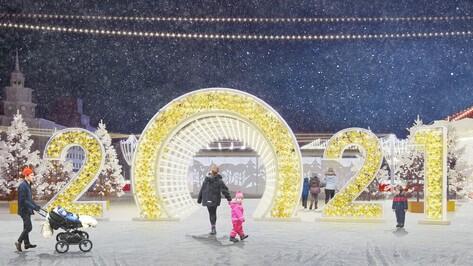 В Воронеже заморозили аукцион на украшение площади Ленина к Новому году