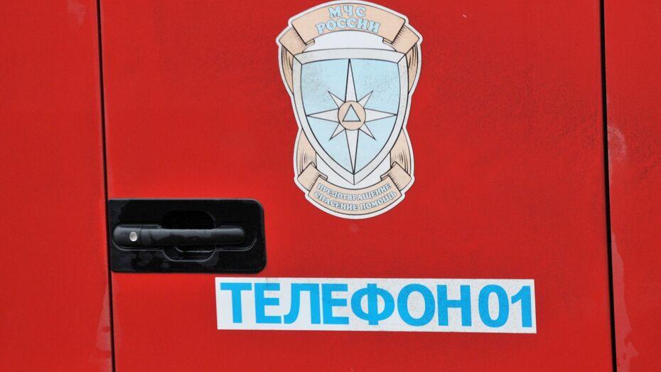 В верхнехавском селе при пожаре погиб воронежец
