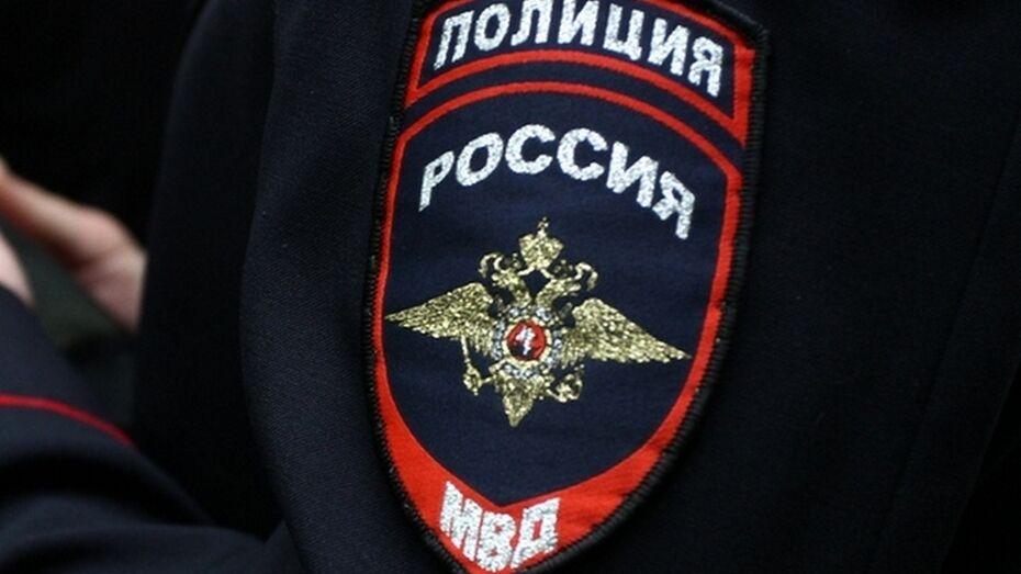 Панинские полицейские поймали вора по следам от санок