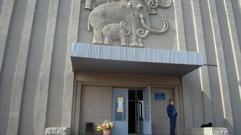 В хохольском музее «Костенки» пройдет международная акция «Ночь музеев»