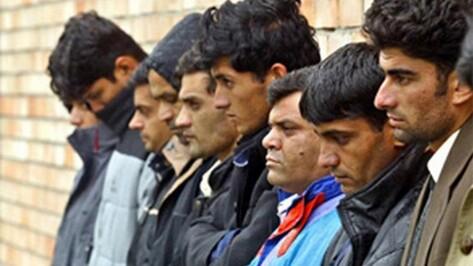 За прием нелегальных мигрантов на работу в воронежские МУПы ответят директора предприятий