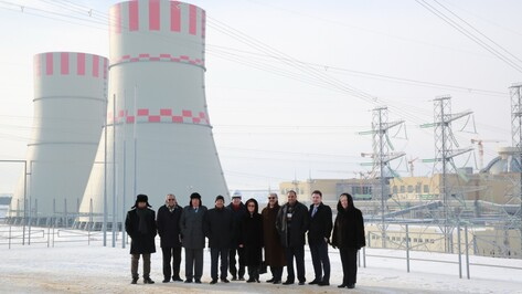 Нововоронежская АЭС станет прототипом для египетской электростанции