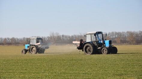 Федбюджет добавил воронежским аграриям средств на возмещение ставок по инвесткредитам
