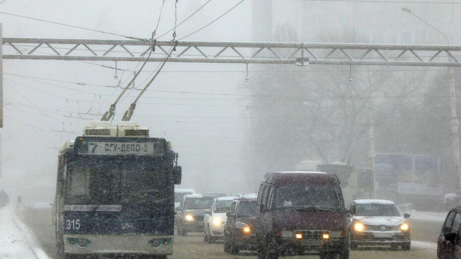 В Воронежской области объявили желтый уровень из-за тумана и гололеда