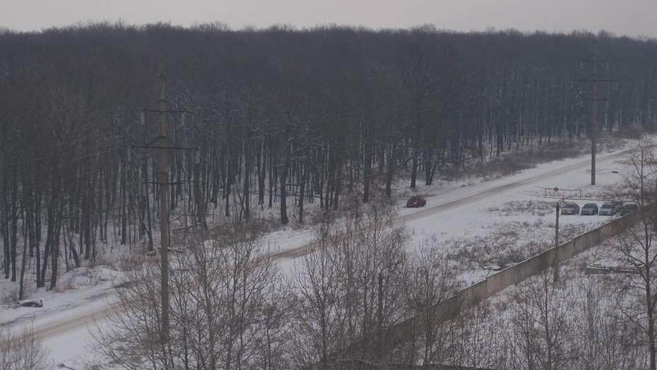 Мокрый снег в Воронеже продлится до пятницы