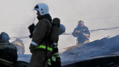 В Воронежской области сгорел склад с 18 т семечек