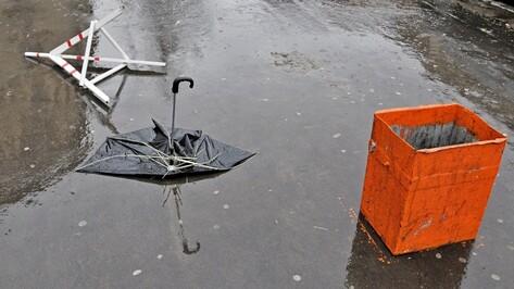 МЧС предупредило о сильном ветре в Воронежской области