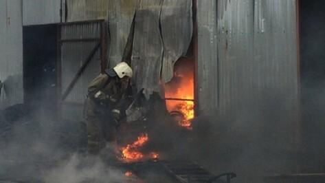 Спасатели опубликовали видео пожара на складе шин в Воронеже