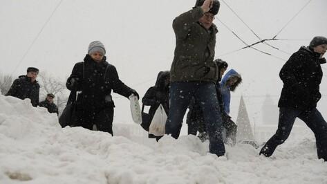 Воронежцы о снегопаде: «Никто не ожидал такого после бесснежного декабря»