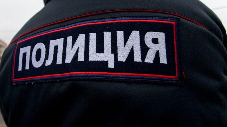 В Эртильском районе вневедомственный патруль задержал вора с печной духовкой