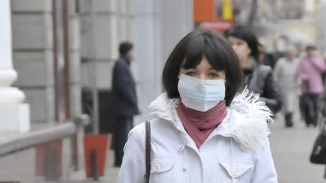 Роспотребнадзор: В Воронеже закончилась эпидемия гриппа