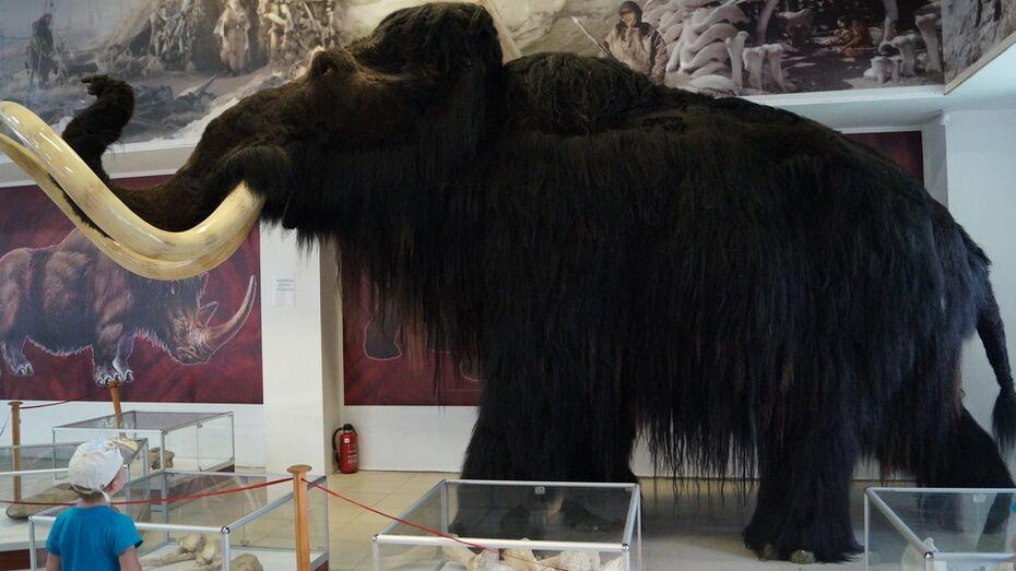 В России открыли лабораторию по клонированию вымерших животных