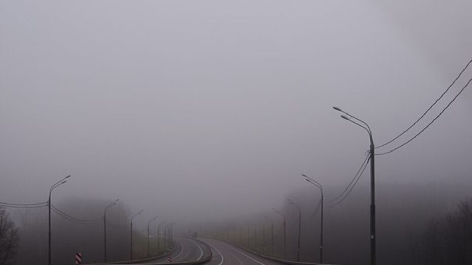 В Саратове отменили рейсовые автобусы до Воронежа из-за тумана