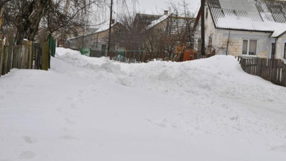 В Репьевском районе водитель оставил умирать сбитых пешеходов