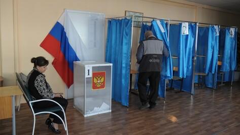 Воронежский облизбирком нашел ошибки в подписных листах еще трех партий