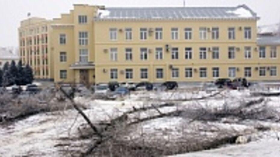 В Лискинском районе в этом году реконструируют шесть скверов