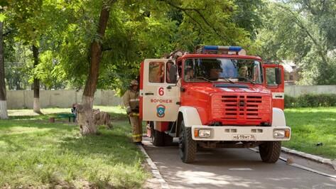 В Воронеже установился высокий класс пожароопасности