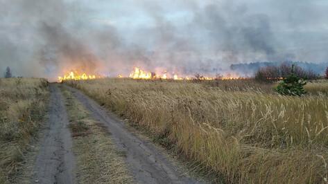 Пожарные спасли 4 населенных пункта в Воронежской области