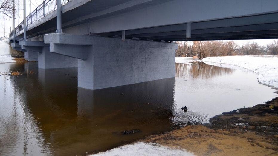В бутурлиновской Осереди поднялся уровень воды