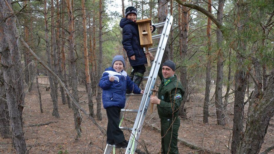 Верхнемамонские школьники развесили в лесу 30 скворечников