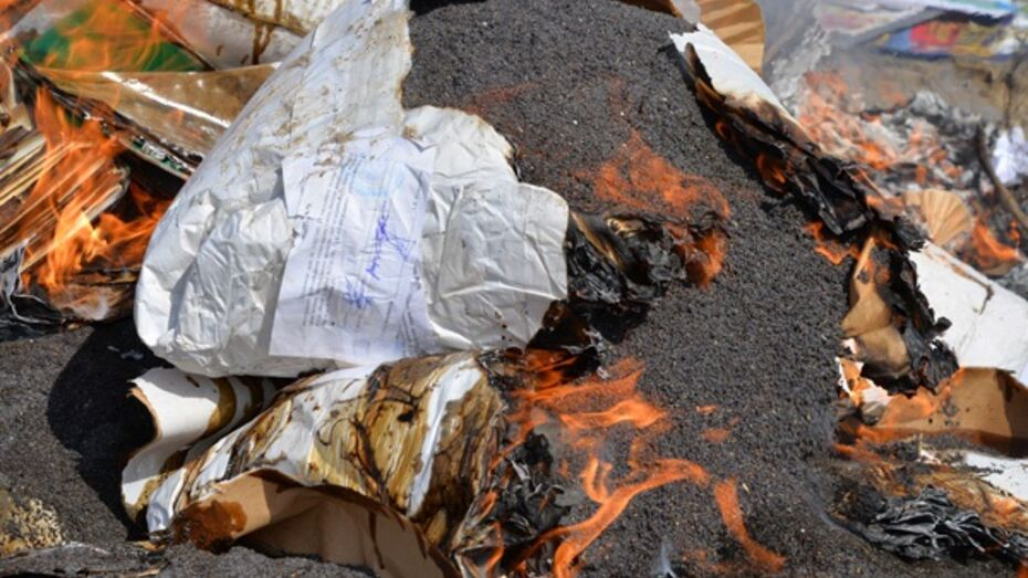 Воронежская наркополиция уничтожила вещдоки по «маковому делу» Полухиных