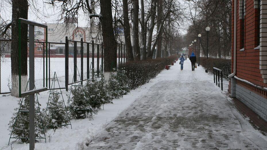 В Бобров неожиданно вернулась зима