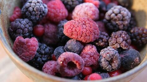 Под Воронежем появится завод по выпуску быстрозамороженных фруктов и овощей