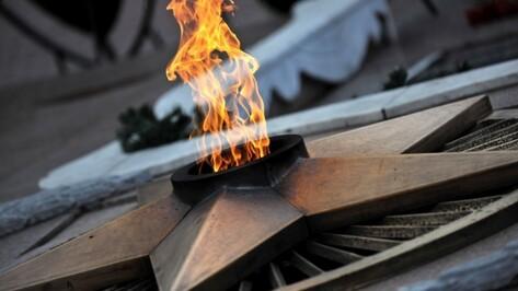 В Воронеже ко Дню памяти и скорби пройдет 93 акции