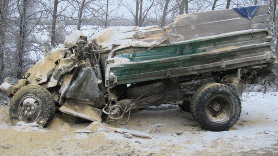 В Кантемировском районе столкнулись два грузовика