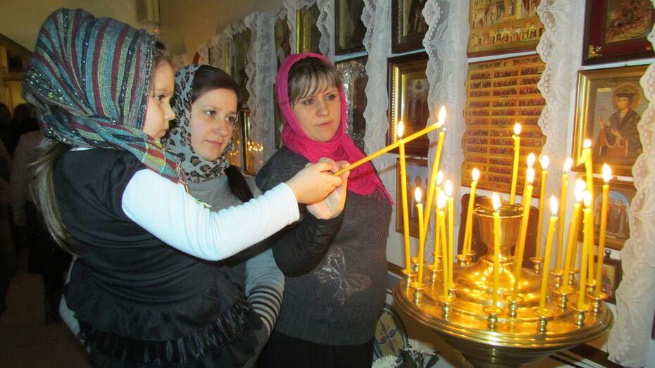 Жители Нижнедевицкого района отметили Рождество