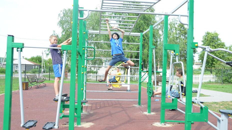 Активисты павловского села Воронцовка оборудовали спортплощадку для подростков и детей
