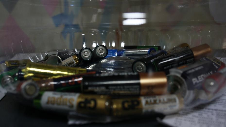 В управах районов Воронежа начали принимать использованные батарейки